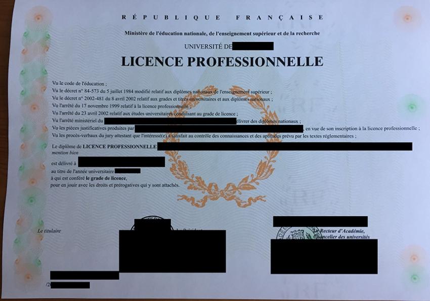 Licence Pro